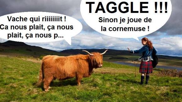 http://supersaumon.cowblog.fr/images/19415346jpgr760xfjpgqx20100409035505.jpg